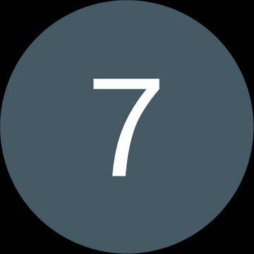 7 Carmicals